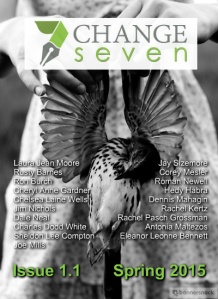 Issue 1.1, Spring 2015