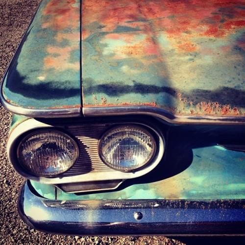 rusted car hood