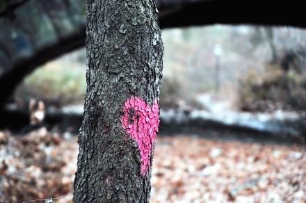 Highland Park Love by Ayendy Bonifacio