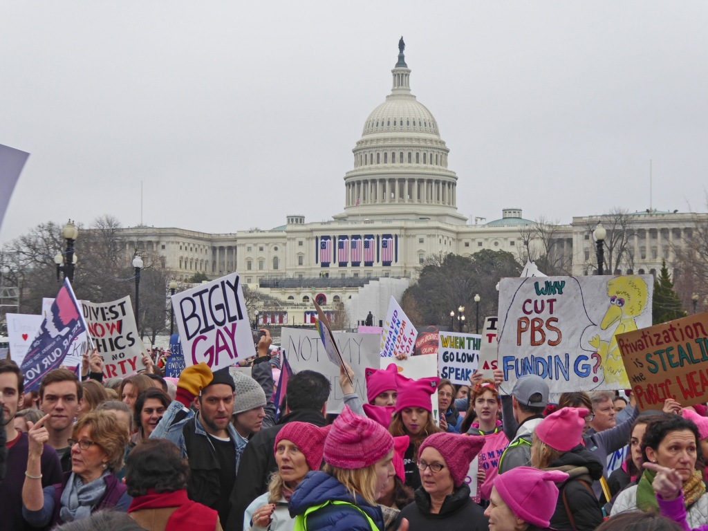 Pink Pussy Hats and Inauguration Flags